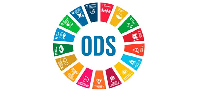 Propostes i recursos per conèixer i treballar els Objectius de Desenvolupament sostenible a l'escola