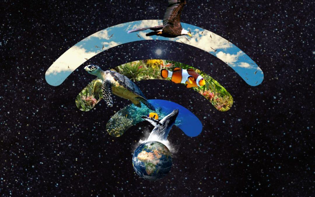 Aquest dissabte desconnecta i connecta amb el planeta