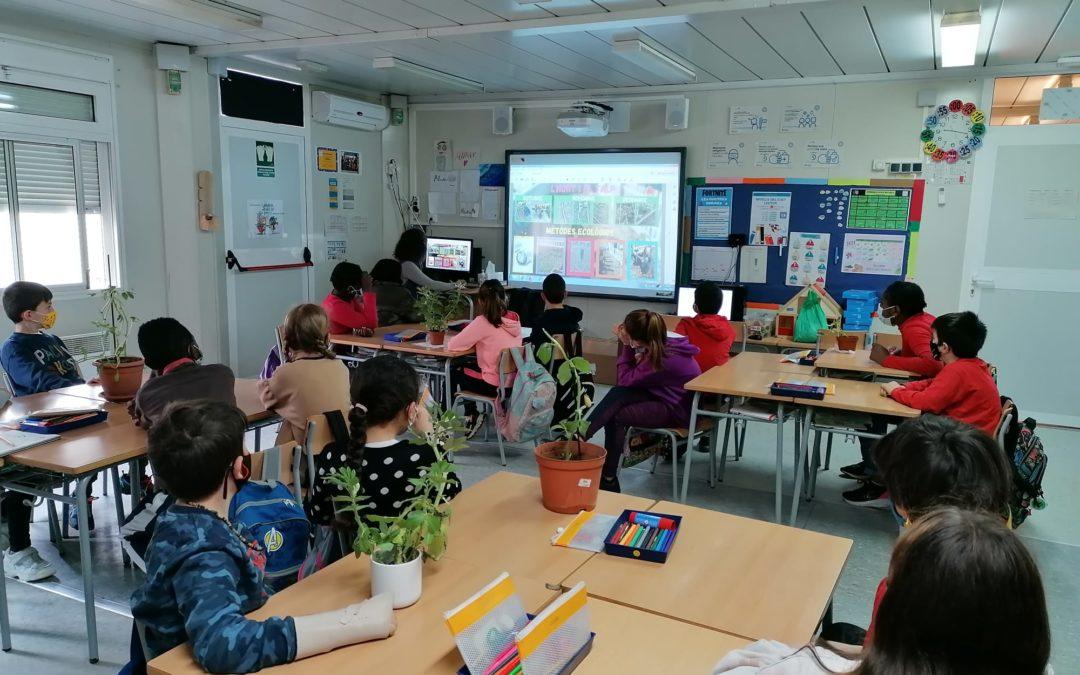 L'hort de primavera de l'escola Mont-roig de Balaguer